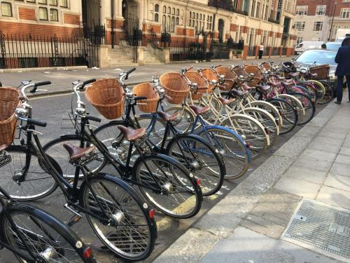 Corporate cycling trip around London on cycle paths with Tally Ho Tours